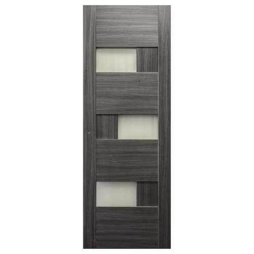 Modern Gray Interior Door EE-11